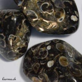Agate pierre roulée