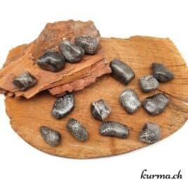 """Bryozoaire """"Corail noir fossilisé"""" – Pierre roulée 2.5cm à 3.5cm – N°5499.1"""