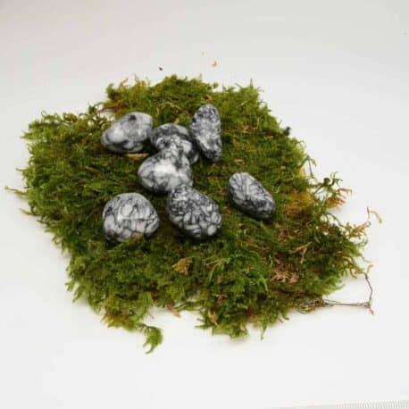 Pinolite-N°5480.1-15gr-2-2.5cm-3