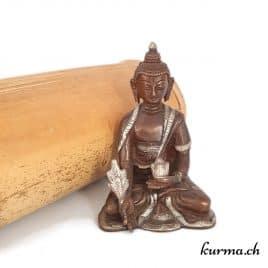 Acheter bouddha médecin