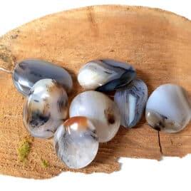 Agate Dendritique – Galet – 4,5 à 5cm – N°5117