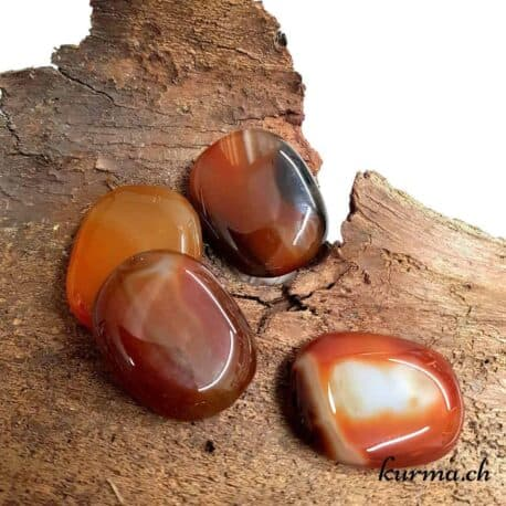 Agate rouge galet