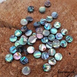 Paua ou Abalone – Perles 8mm disque plat – N°9200