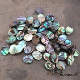 Paua ou Abalone – Perles 6.5×8.5mm ovale plate – N°9199