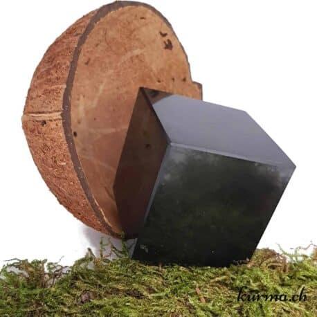 Cube Shungite 5cm