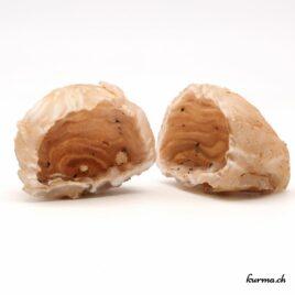 agate géode minéraux brute